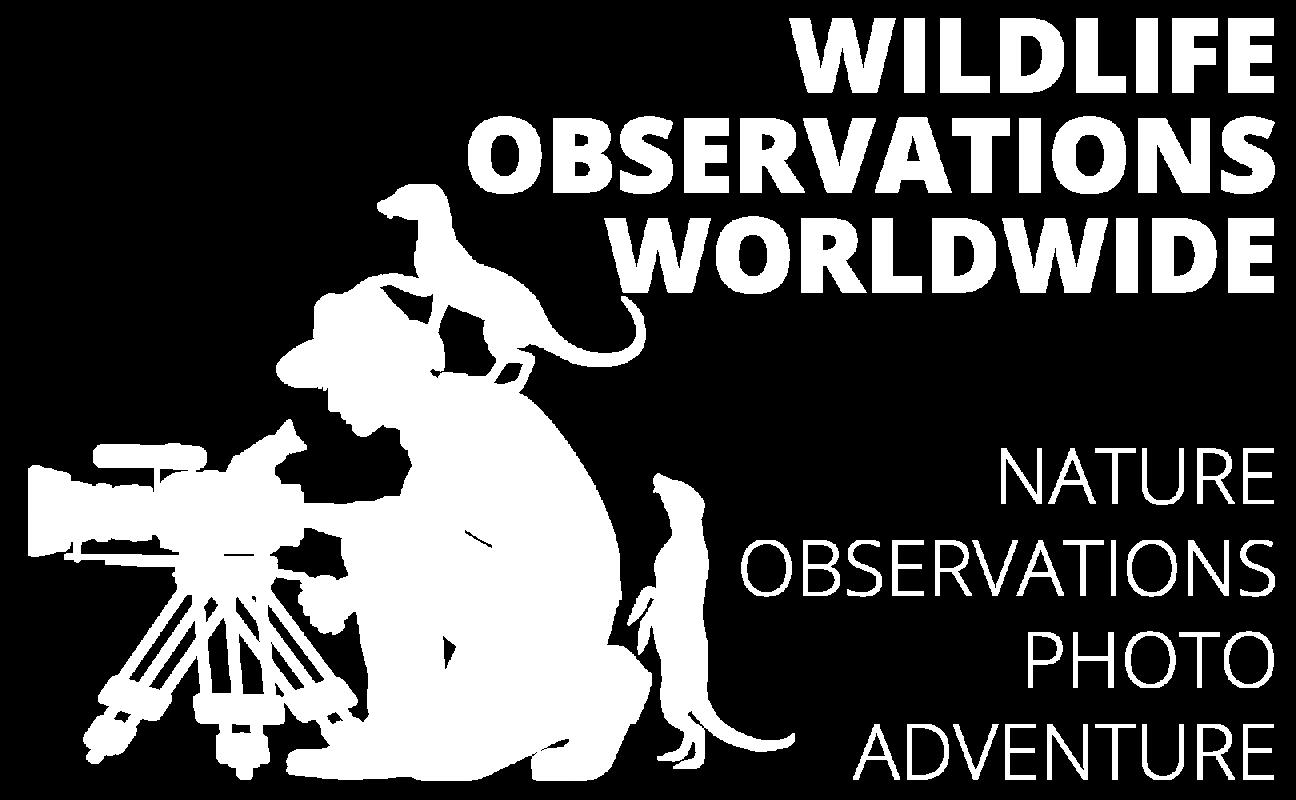 Wildlife Observations Worldwide Wildlife Observations Worldwide